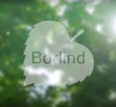 boerlind_company_video_header
