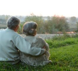 На деревню бабушке: полезные продукты и нужные услуги для старшего поколения