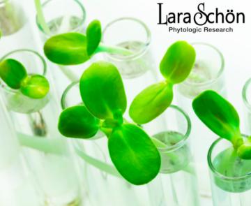 LARA SCHON — результативная  фитокосметика от династии австрийских травников