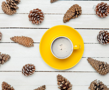 photo of yellow cup of coffee near dried beautiful cones on the wonderful white wooden background