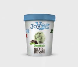 Мороженое кокосовое Шоколадно-Мятное (ведерко) 300г